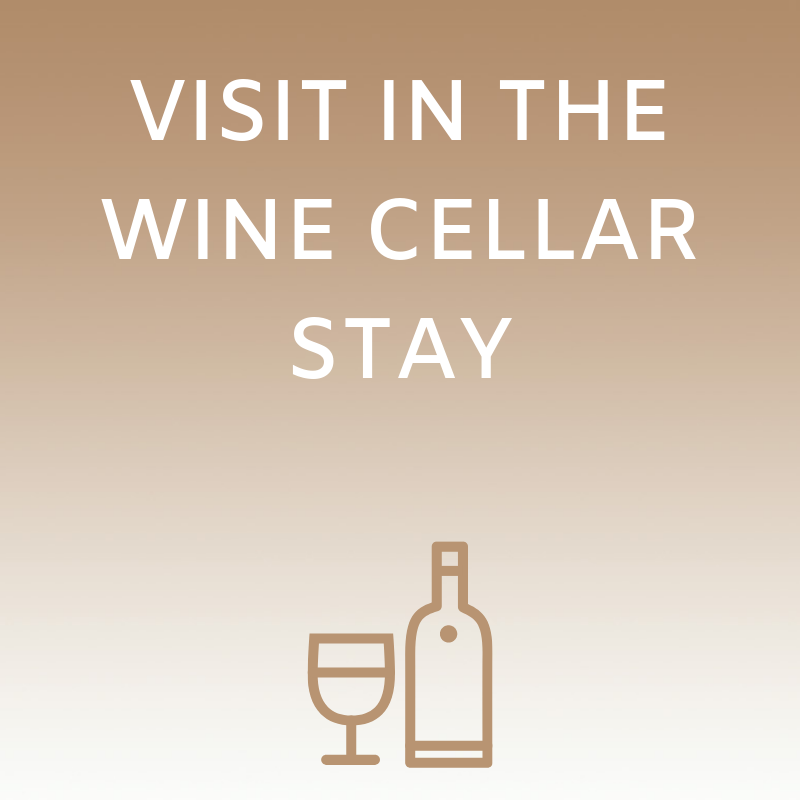 Visit in the wine cellar stay
